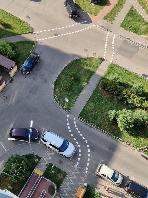 На Кашенкином Лугу нарисовали разметки пешеходной тропы