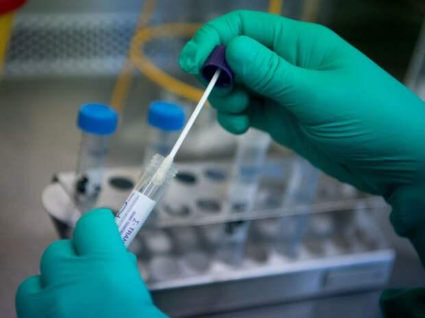 В России разработали ПЦР-тест на коронавирус по любым биологическим жидкостям