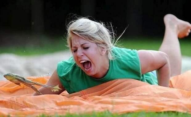 21. Если во время соревнований по прыжкам лягушек в штате Калифорния ваша лягушка умрет, вы не можете ее съесть - это запрещено законом. абсурдные законы, законы сша, сша