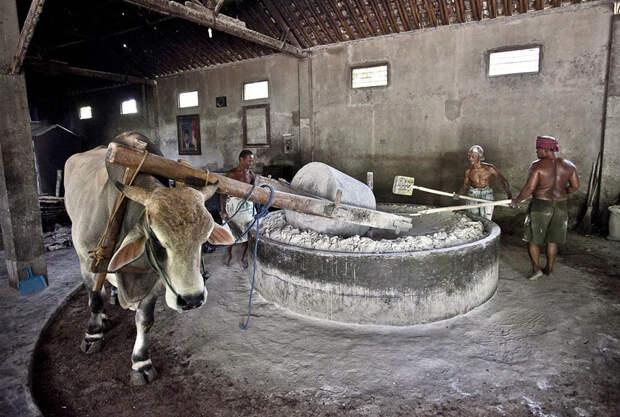 Традиционное приготовление лапши в Индонезии