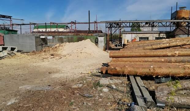 В Тюмени горожане могут бесплатно забрать опилки с местного предприятия