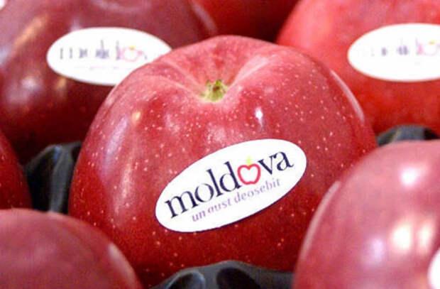 Экспорт яблок из Молдовы этой весной резко сократился
