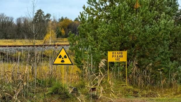 Новые ядерные реакции зафиксировали на Чернобыльской АЭС