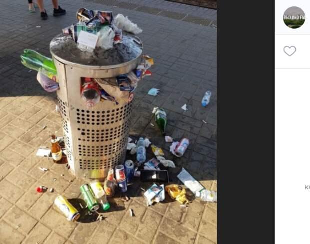 «Монблан» из мусора обнаружили жители на станции Выхино