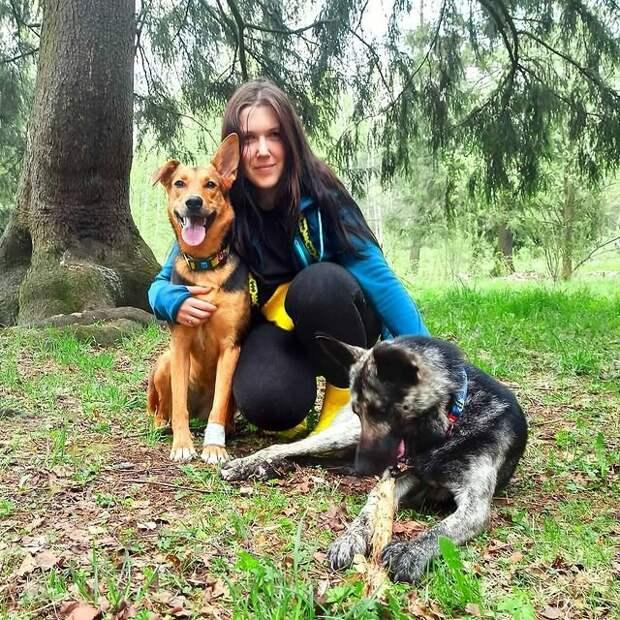 Семейная пара берёт в приюте вторую собачку и превращает их жизнь в сказку