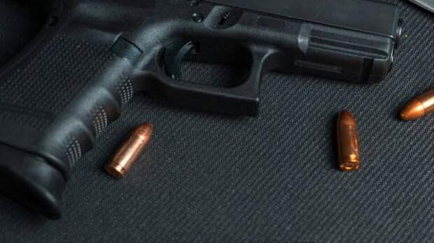 Госдума приняла вIчтении законопроект, ужесточающий контроль заоборотом оружия