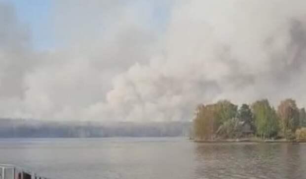 Лесные пожары окружили поселок Рефтинский икрупнейшую вобласти птицефабрику