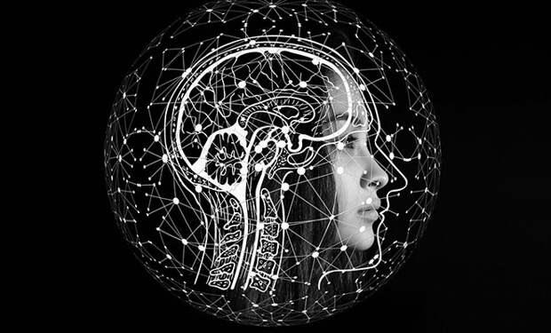 Психологи придумали лучший способ запомнить много фактов и терминов: нужно сочинить про них историю