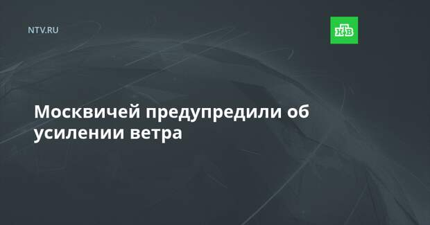 Москвичей предупредили об усилении ветра