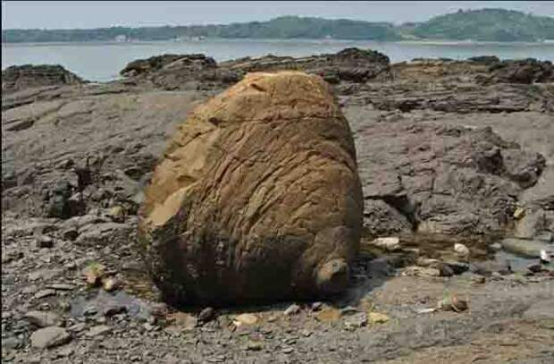 Каменные Животные