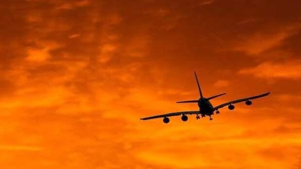 Медики опровергли инсульт у пилота экстренно севшего в Новосибирске самолета
