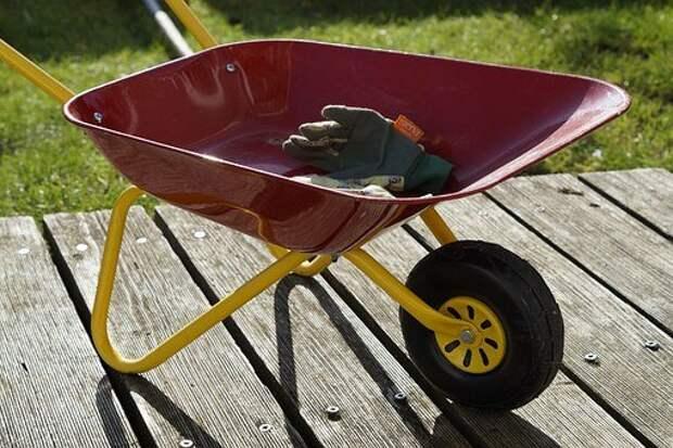 Садоводство, Детские Игрушки, Тачка