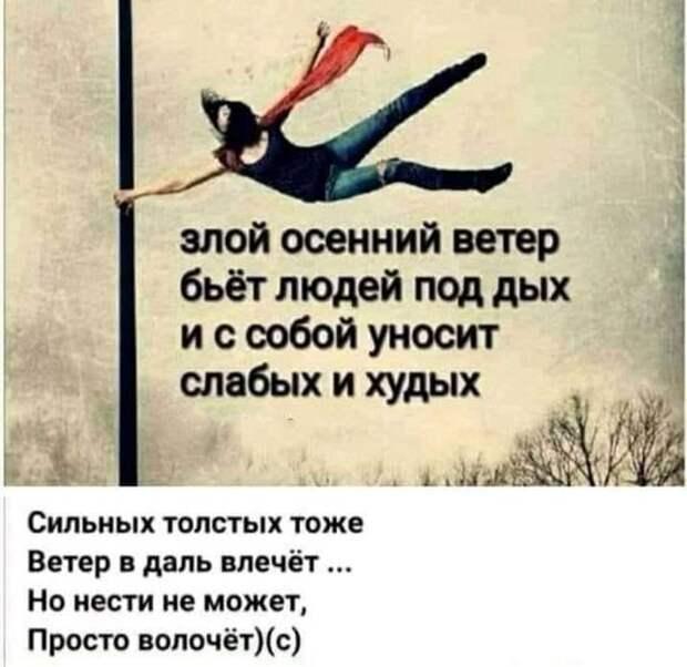 Возможно, это изображение (один или несколько человек и текст «ይ злой осенний ветер бьёт людей под дых и c собой уносит слабых и худых сильных толстых тоже ветер в даль влечёт... Ho нести не может, просто волочёт)(с)»)