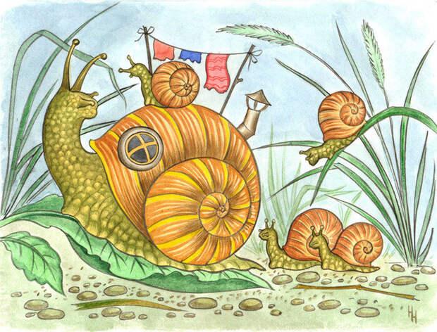 Моллюски из России портят Великие озера