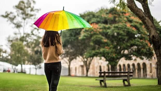 Небольшой дождь и до плюс 19 градусов ожидается в Подольске в пятницу