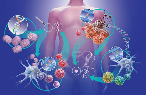 Простые правила для снижения риска развития онкологических заболеваний
