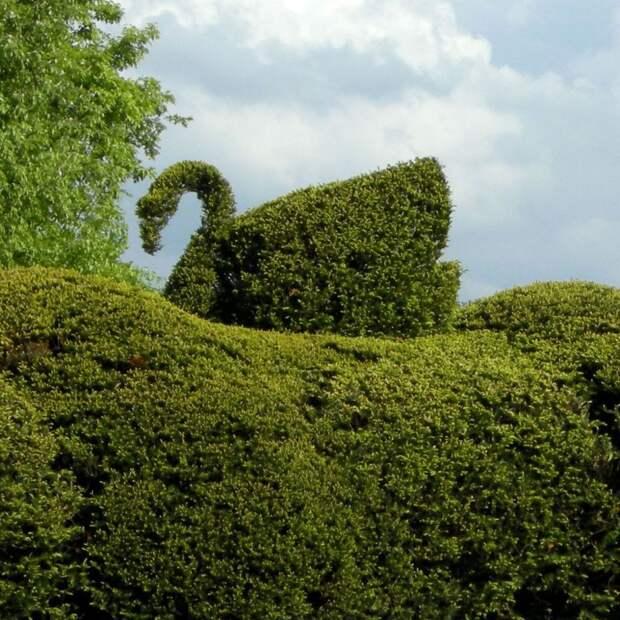 Ladew Topiary Gardens-2013-08-14 (1)