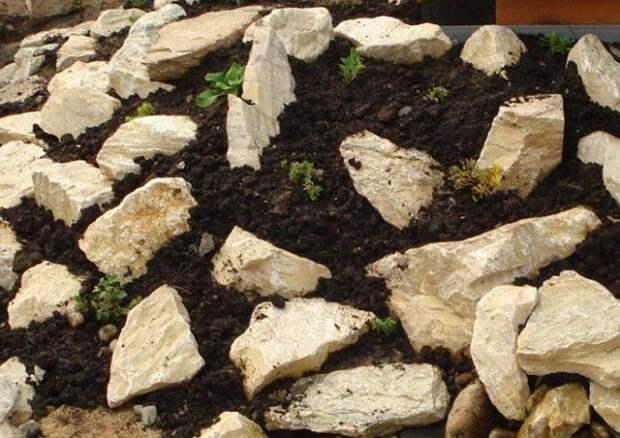 Закапывайте камни в землю примерно на 1/3