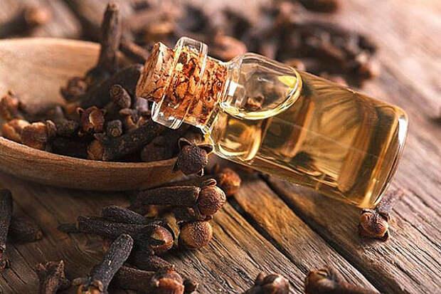 Ароматические масла: свойства эфирных масел и применение для ароматерапии  дома. Какое средство выбрать для увлажнителя воздуха?