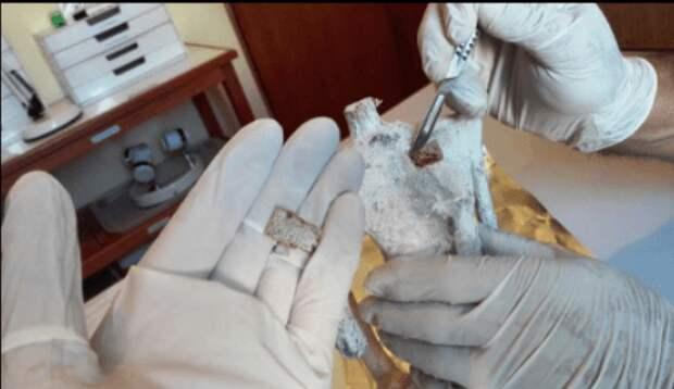 Гуманоидная рептилия — «Мумия Наска» из Перу