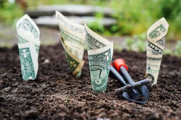 Эксперт оценил политику деофшоризации экономики России