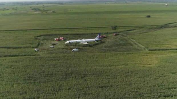Эксперт оценила сообщения о пострадавших при жёсткой посадке А321 детях