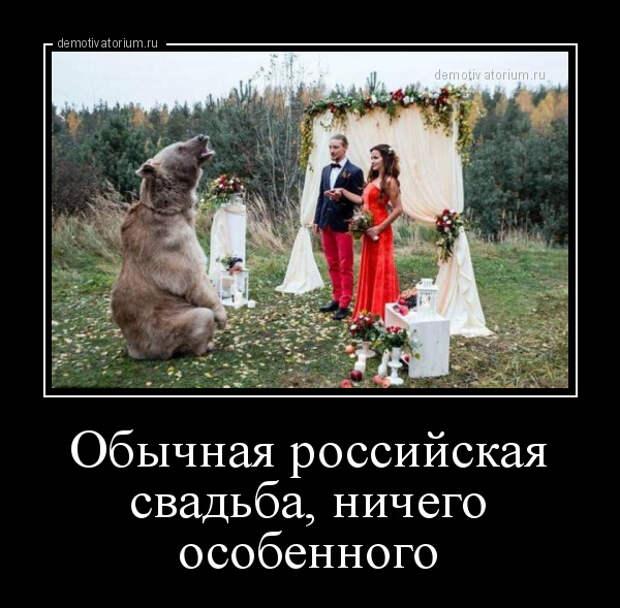 Демотиватор Обычная российская свадьба, ничего особенного