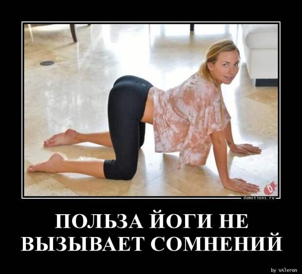 ПОЛЬЗА ЙОГИ НЕ ВЫЗЫВАЕТ СОМНЕНИЙ » Demotions.ru - ДЕМОТИВАТОРЫ.
