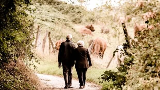 В России может появиться новое пособие для пенсионеров