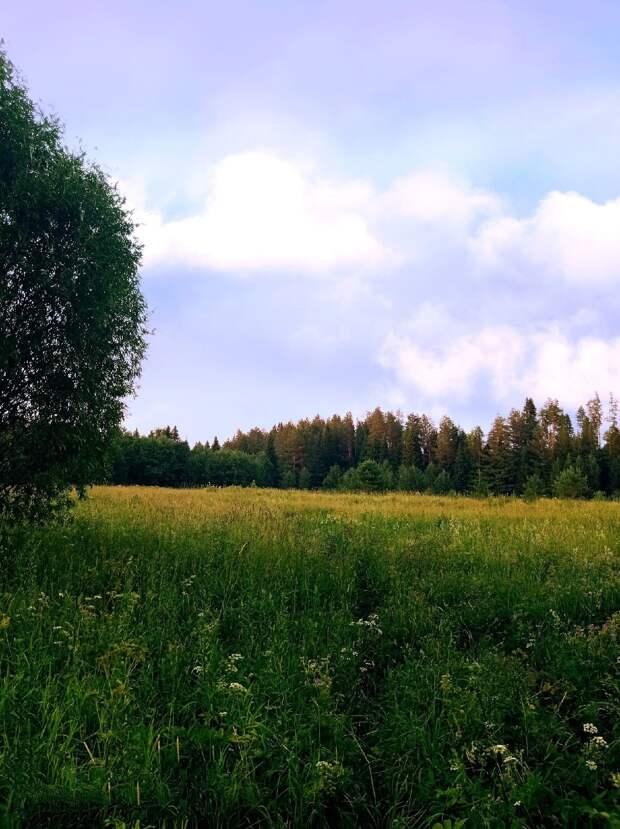 Красоты России (#657)