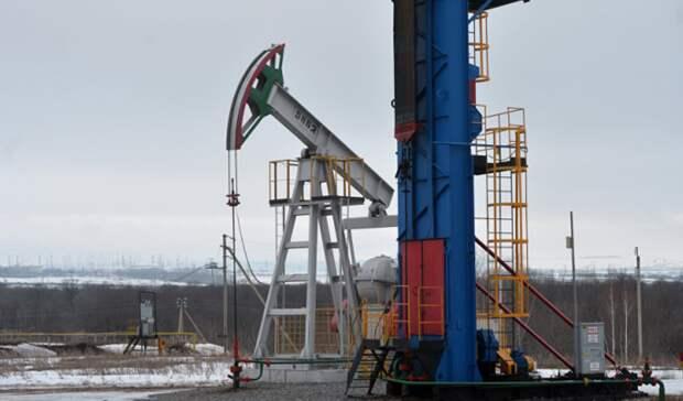 «Татнефть» задумалась обэкспорте технологий добычи сверхвязкой нефти