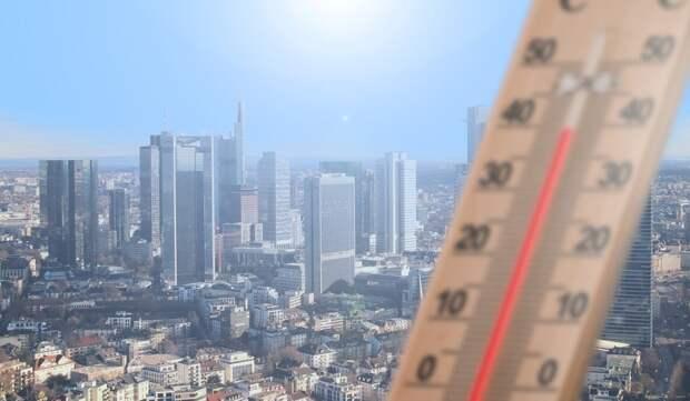 Потовые железы особенно интенсивно работают в жаркую погоду