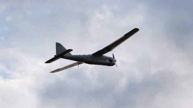 """Украина поставит для нужд ВСУ дрон-разведчик """"Лелека-100"""""""