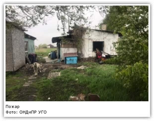 Фото: ОНДиПР УГО