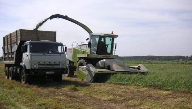 Пять грантов предоставили за 3 года в поддержку сельхозкооперативов Подмосковья