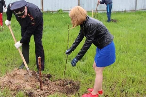 Наркополицейские высадили фруктовый сад с пациентами Реабилитационного центра