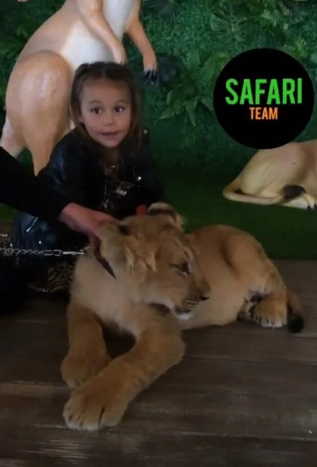 лея со львенком