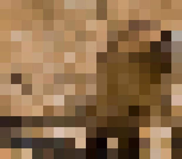 На этих 8 фото ровно столько пикселей, сколько осталось в природе животных этого вида
