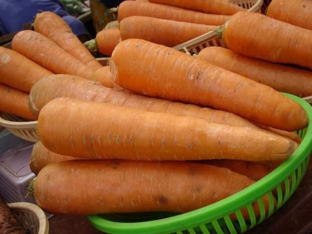 Список  самых поздних овощей