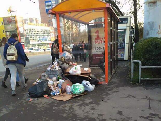 В Ростове с начала года ликвидировали более 800 стихийных свалок мусора