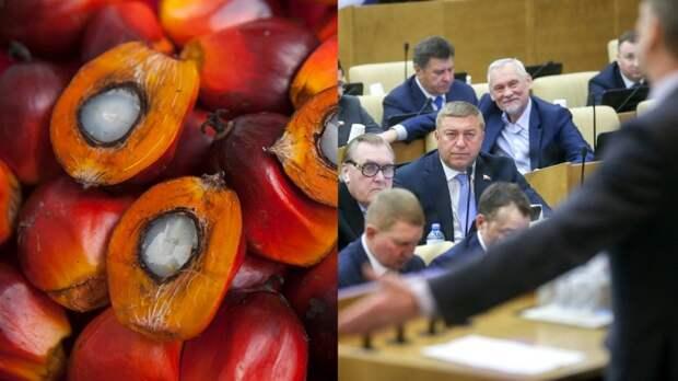Правительство РФ изучит причины роста ввозимого пальмового масла в страну за 15 лет