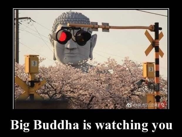 Big Buddha is watching you демотиватор, демотиваторы, жизненно, картинки, подборка, прикол, смех, юмор