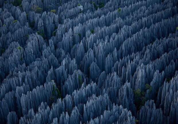 Каменный лес, Китай завораживающе, земля, интересное, красота, пейзажи, природа, фотомир