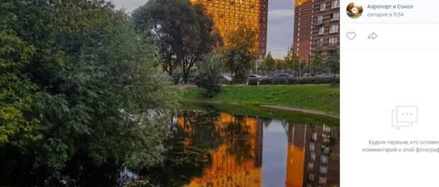 Фото дня: пруд в Большом Коптевском проезде