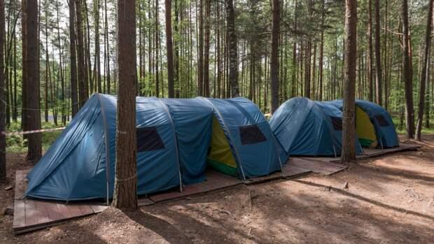 Министр просвещения РФ потребовал провести проверку безопасности в детских лагерях