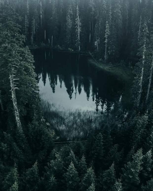 Таёжные истории - Хозяйка Чёрного озера