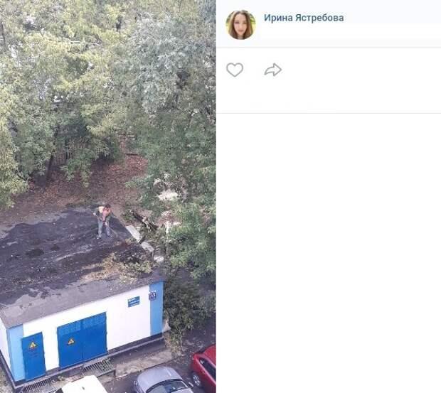 Упавшее дерево на Малахитовой убрали