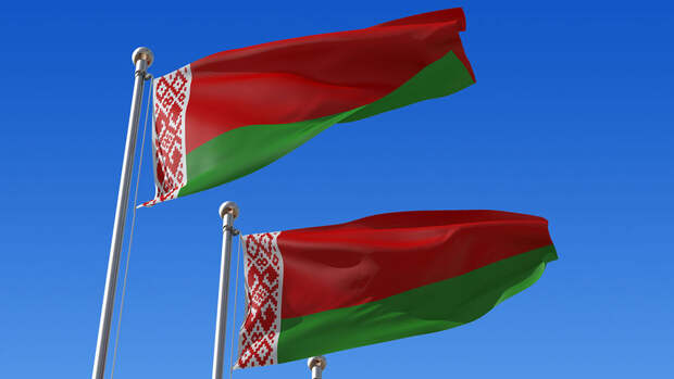 В Белоруссии в надругательстве над государственным флагом могут подозревать оперную певицу