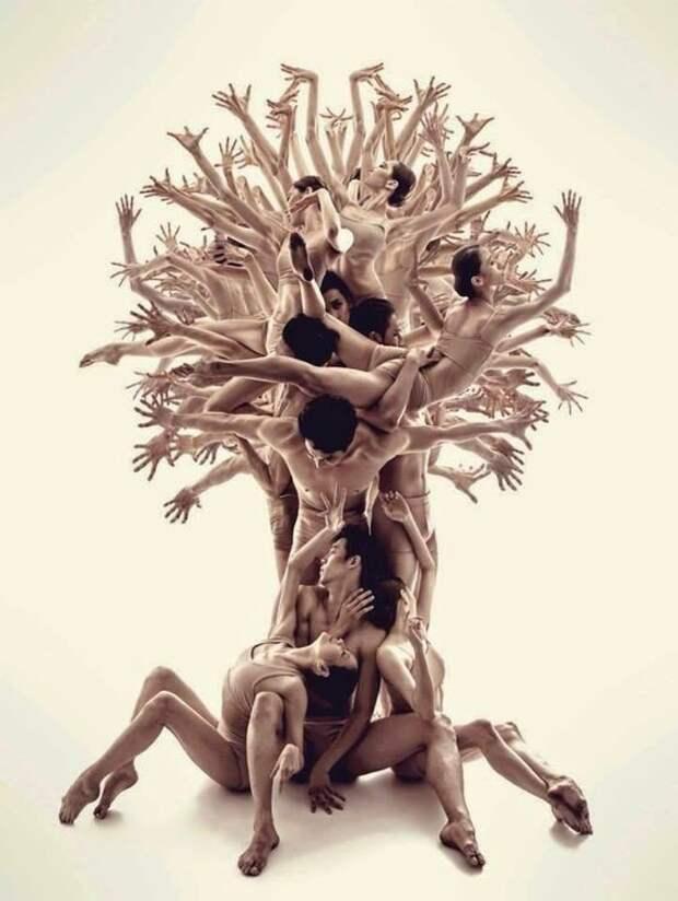 Человеческое тело как искусство искусство, красиво, поразительно, тело, человек, шедевры