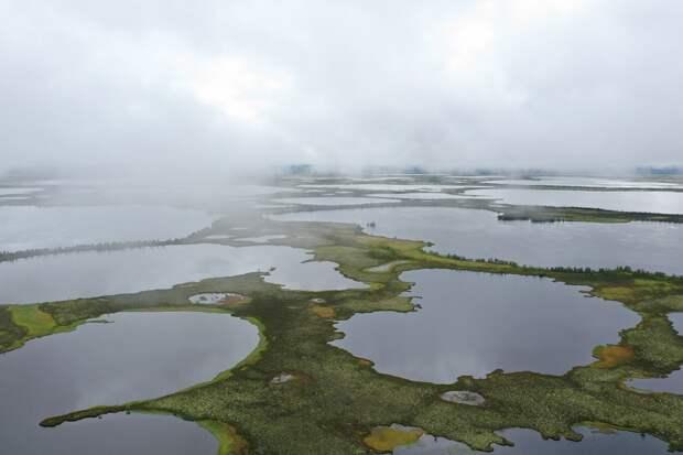 Учёные сняли фильм про исчезающие озёра в Арктике